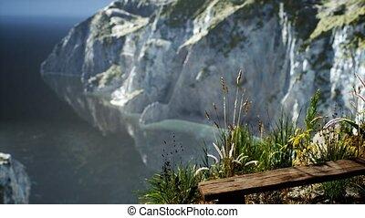 grand, océan, falaise, rocheux, herbe, frais