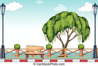 grand, parc, arbre