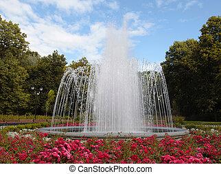 grand, parc, fontaine, été