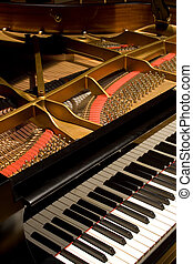 Grand Piano with cover open to see the rich detail
