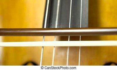 grand plan, violoncelle, jouer