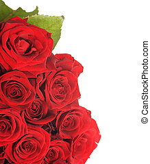 grand, roses rouges, bouquet