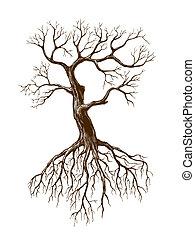 grand, sans feuilles, arbre