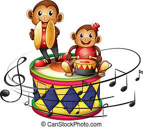 grand, tambour, deux, au-dessus, singes