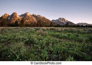 Grand Tetons at Sunrise