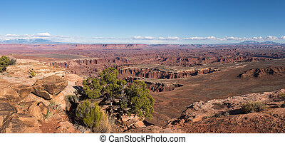 Grand View Point Overlook, from Canyonlands National Park Utah