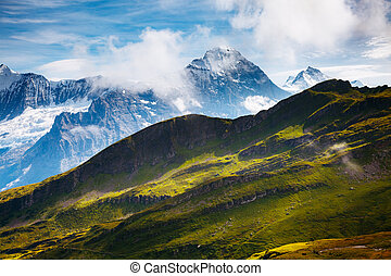grand, vue, de, alpin, hill., emplacement, endroit, alpes suisses, grindelwald, valley.
