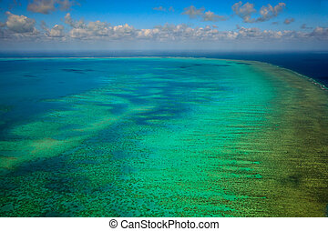 grande, aéreo, barrera, arlington, parque, arrecife, marina, vista