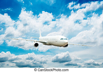 grande, aereo, passeggero