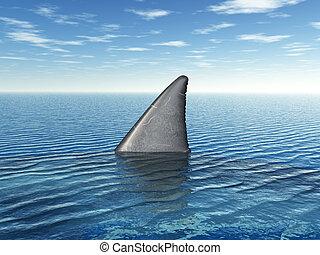 grande, aleta, blanco, tiburón