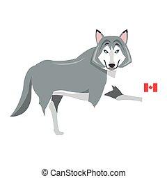 grande, bandeira, ícone, lobo, canadense