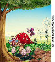 grande, borboletas, árvore, cogumelo