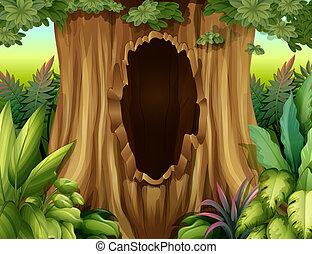grande, buraco, árvore