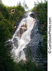grande, cascata, in, foresta verde, su, giorno pieno sole