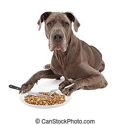grande, cibo mangia, cane, utensili, danese