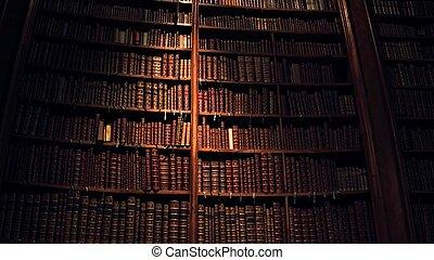 grande, colección, de, viejo, uncognizable, libros