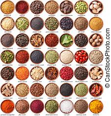 grande, collezione, di, differente, spezie, e, erbe