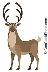 grande, cuernos, animal, venado, ciervo, salvaje, fauna