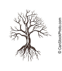grande, deshojado, árbol