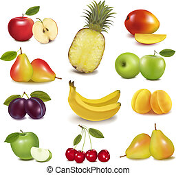 grande, diferente, grupo, fruit., vector.