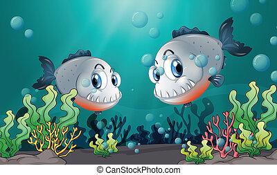 grande, due, grigio, mare, sotto, pesci
