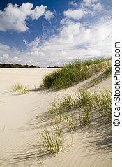 grande, dune, sabbia, costiero