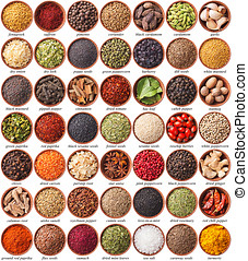 grande, erbe, differente, spezie, collezione