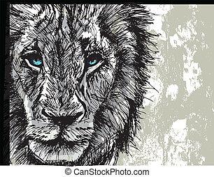 grande, esboço, leão masculino, africano