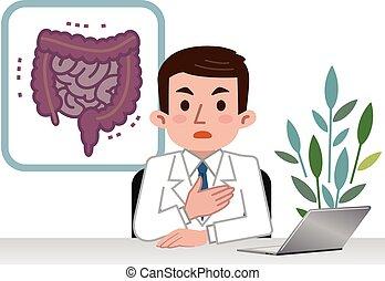 grande, explicando, intestino delgado, doutor