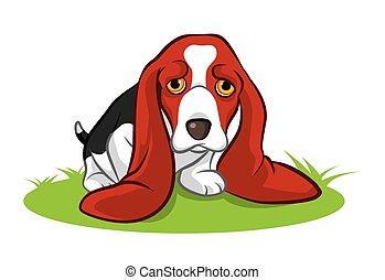 grande, filhote cachorro, orelhas