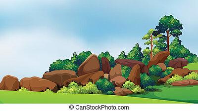 grande, floresta, pedras