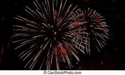 grande, fogos artifício, para, a, feriado