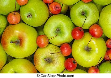 grande, granchio, piccolo, mele, verde rosso