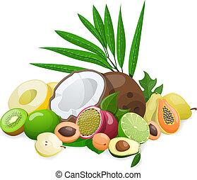 grande, grupo, de, exótico, fruit., vector, ilustración