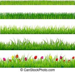 grande, hierba verde, y, flores, conjunto