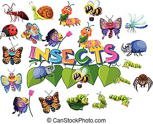 grande, insecto, conjunto, paquete