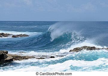 grande onda, su, atlantico, costa, di, fuerteventura, isole...