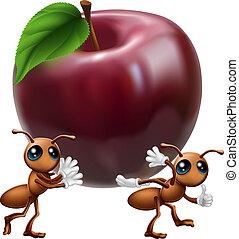 grande, proceso de llevar, manzana, hormigas
