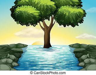 grande, rio, árvore, meio