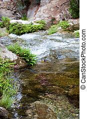 grande, rocas, en, el, río, con, verde, plantas