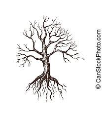 grande, senza foglie, albero