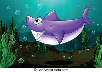 grande, squalo, mare, sotto