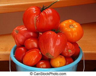 grande, tomates maduros