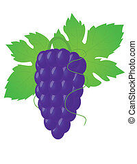 grande, uva
