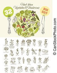grande, verdura, set, disegnato, mano
