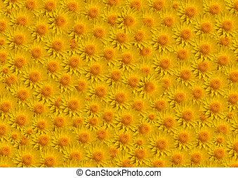 grandes fleurs, jaune, remplir