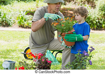 Grandfather and grandson engaged in gardening - View of a ...