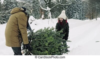 Grandfather and small girl getting a Christmas tree in...