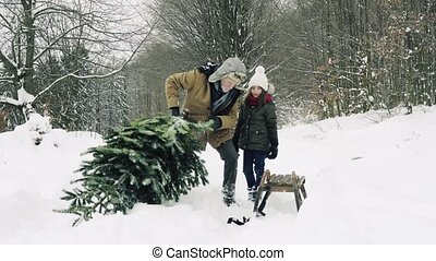 Grandfather and small girl getting a Christmas tree in ...