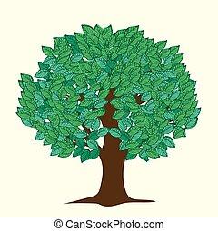 grandi foglie, albero, verde